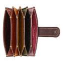 Accordion Card Case, ${color}