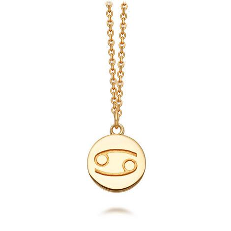 Cancer Zodiac Pendant  Biography Necklace, ${color}