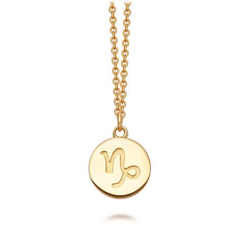 Capricorn Zodiac Pendant Biography Necklace, ${color}