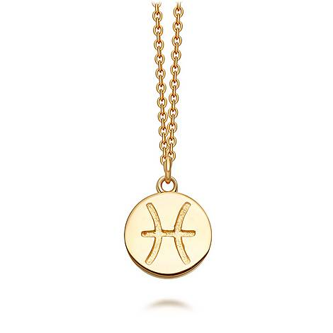 Pisces Zodiac Pendant  Biography Necklace, ${color}