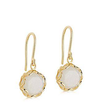 Paloma Moonstone Drop Earrings
