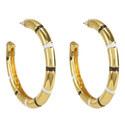 Olisa Hoop Earrings, ${color}