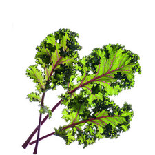 Three Red Kale Pods