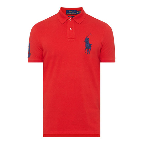 Embroidered Polo Shirt, ${color}