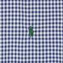Gingham Slim Fit Cotton Oxford Shirt, ${color}