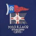 Custom Fit Flag Polo Shirt, ${color}