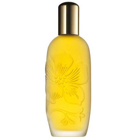 Aroma Elixir 100ml, ${color}