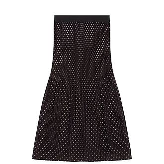 Pleated Embroidered Skirt