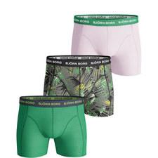 3-Pack Summer Palm Trunks