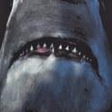 Shark Print T-Shirt, ${color}