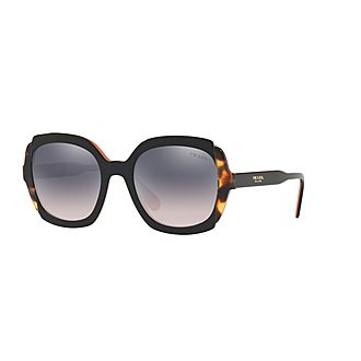 Square Sunglasses 16US 54