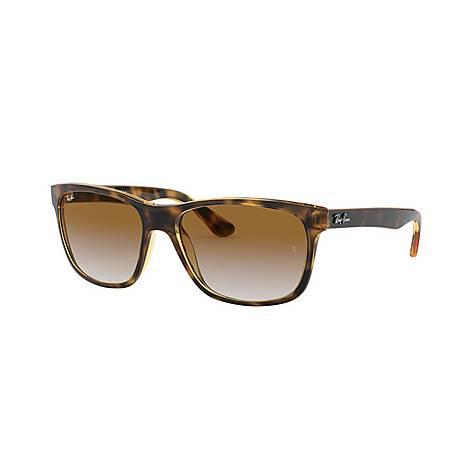 Havana RB4181 Square Sunglasses, ${color}