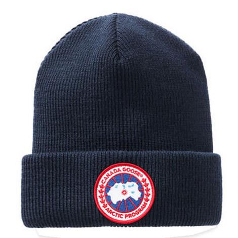 Arctic Disc Beanie Navy, ${color}