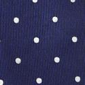 Polka Dot Tie, ${color}