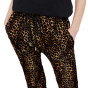 Velvet Leopard Print Trousers, ${color}