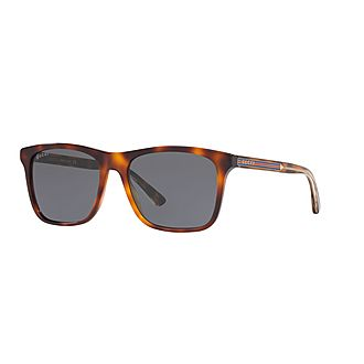 Square Sunglasses GG0381S