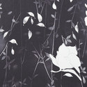 Floral Print Polo Neck Shirt, ${color}