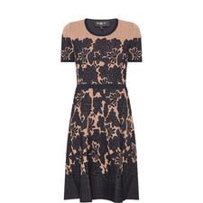 Jacquard Guipure Dress