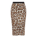Animal Print Pencil Skirt, ${color}
