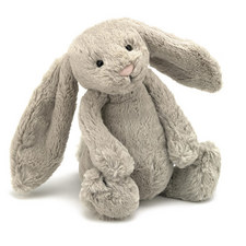 Bashful Bunny Rabbit