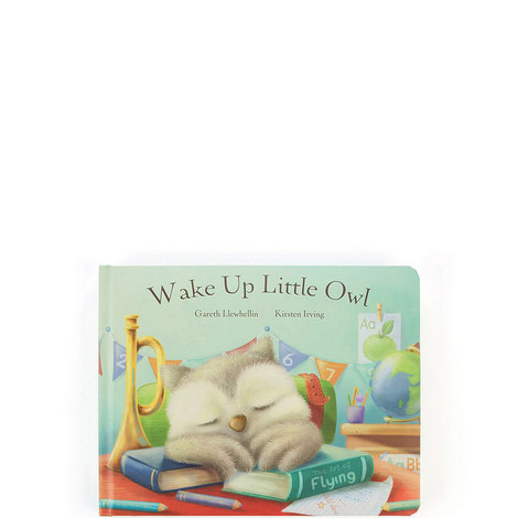 Wake Up Little Owl Book, ${color}