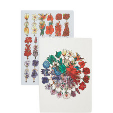 Two Notebook Set