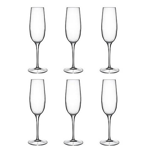 Palace Champagne Flute Set of 6, ${color}