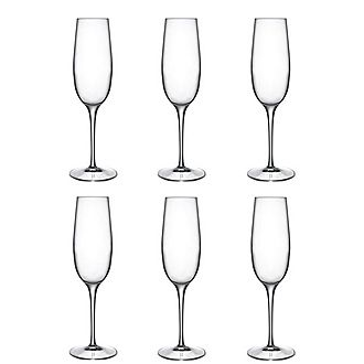Palace Champagne Flute Set of 6