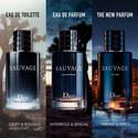 Sauvage EDP 100ml, ${color}
