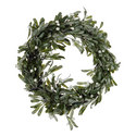 Mistletoe LED Wreath, ${color}
