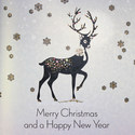 Reindeer Print Cards Set of 6, ${color}