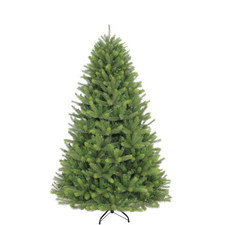 Islington Fir Tree 7.5ft