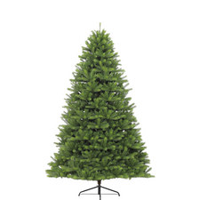Islington Fir Tree 9ft