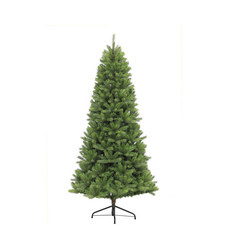 Slim Islington Fir Tree 7.5ft