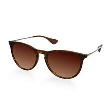 Erika Sunglasses RB4171