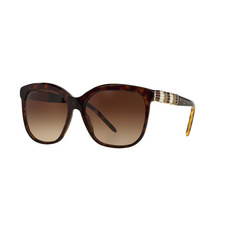 Square Sunglasses BV8155