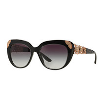 Cat Eye Sunglasses BV8162B