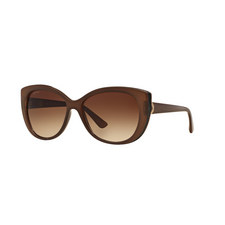Cat Eye Sunglasses BV8169Q