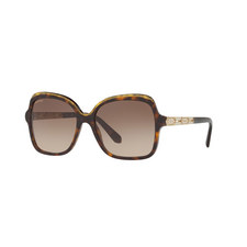 Square Sunglasses BV8181B