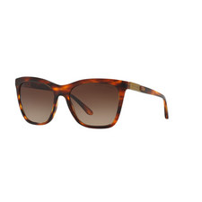 Square Sunglasses RL8151Q