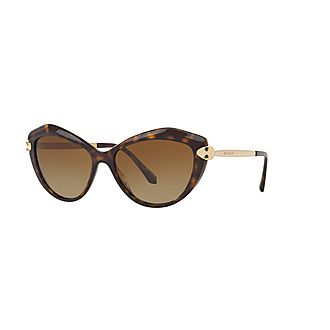 Cat Eye Sunglasses 0BV8186KB