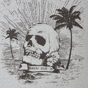 Skull Surfing Tour Print T-Shirt , ${color}