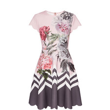 Haiilie Palace Gardens Skater Dress
