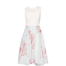 Idola Soft Blossom Contrast Dress
