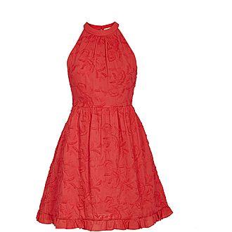 Lorene Skater Embroidered Dress