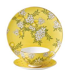 Tea Garden Lemon & Ginger 3 Pieces