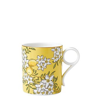 Tea Garden Lemon & Ginger Mug