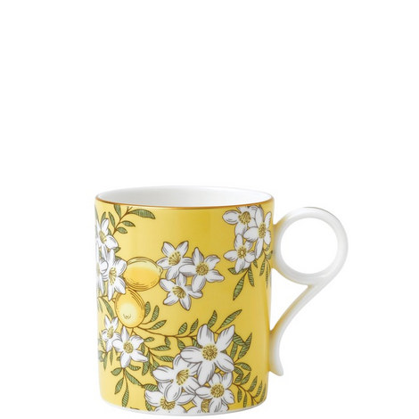 Tea Garden Lemon & Ginger Mug, ${color}