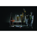 Two Elegance Classic Champagne Flutes, ${color}